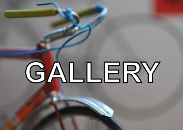 Gallery-630x448