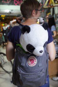 20161011-panda-4