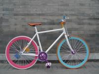 201303_Bikes_38.jpg