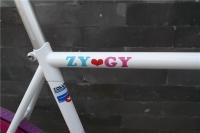 1208 Natooke bike 11.jpg