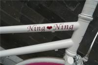 1208 Natooke bike 16.jpg