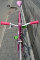 1207 Natooke bike 105.jpg