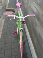 1207 Natooke bike 121.jpg