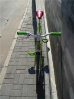 1207 Natooke bike 131.jpg
