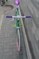 1207 Natooke bike 23.jpg