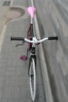 1207 Natooke bike 34.jpg
