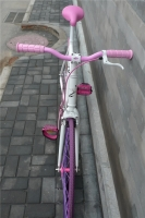1207 Natooke bike 42.jpg