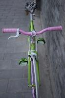 1111 Natooke bike 103.JPG