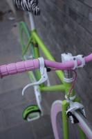 1111 Natooke bike 104.JPG
