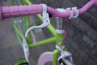 1111 Natooke bike 105.JPG