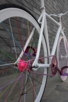 1111 Natooke bike 36.JPG