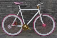1111 Natooke bike 38.JPG