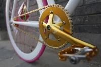 1111 Natooke bike 39.JPG