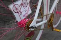 1111 Natooke bike 40.JPG