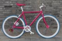 1111 Natooke bike 48.JPG