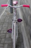 1111 Natooke bike 59.JPG