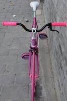 1111 Natooke bike 63.JPG