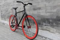 1111 Natooke bike 84.JPG
