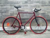 1110 Natooke bike 12.jpg