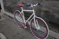 1110 Natooke bike 36.JPG