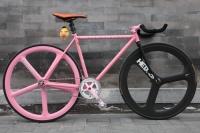 1109 Natooke bike 44.JPG