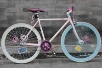 1109 Natooke bike 46.JPG