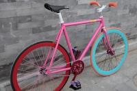 1109 Natooke bike 50.JPG