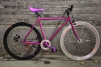 1109 Natooke bike 52.JPG