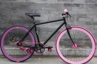 1109 Natooke bike 61.JPG